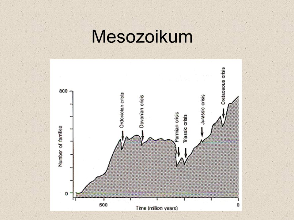 Mesozoikum