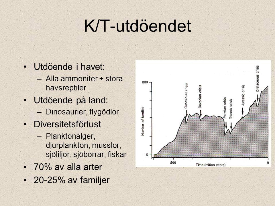 K/T-utdöendet Utdöende i havet: Utdöende på land: Diversitetsförlust