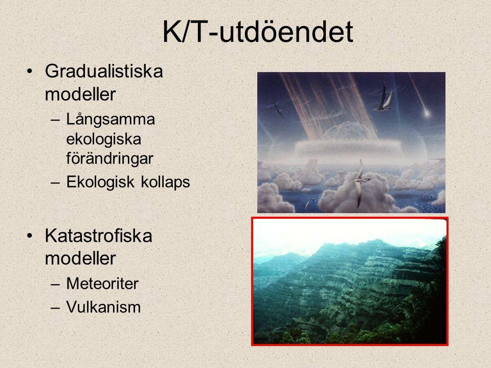 K/T-utdöendet Gradualistiska modeller Katastrofiska modeller