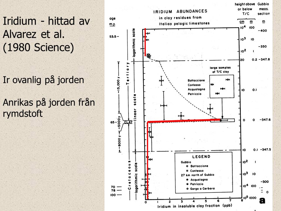 Iridium - hittad av Alvarez et al. (1980 Science)