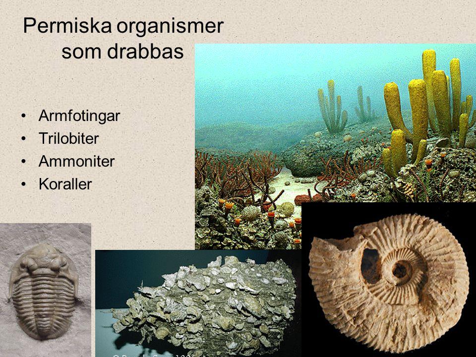 Permiska organismer som drabbas