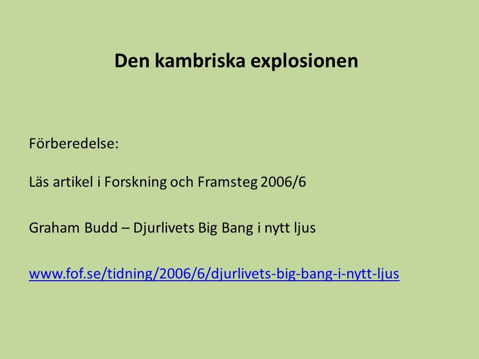 Den kambriska explosionen