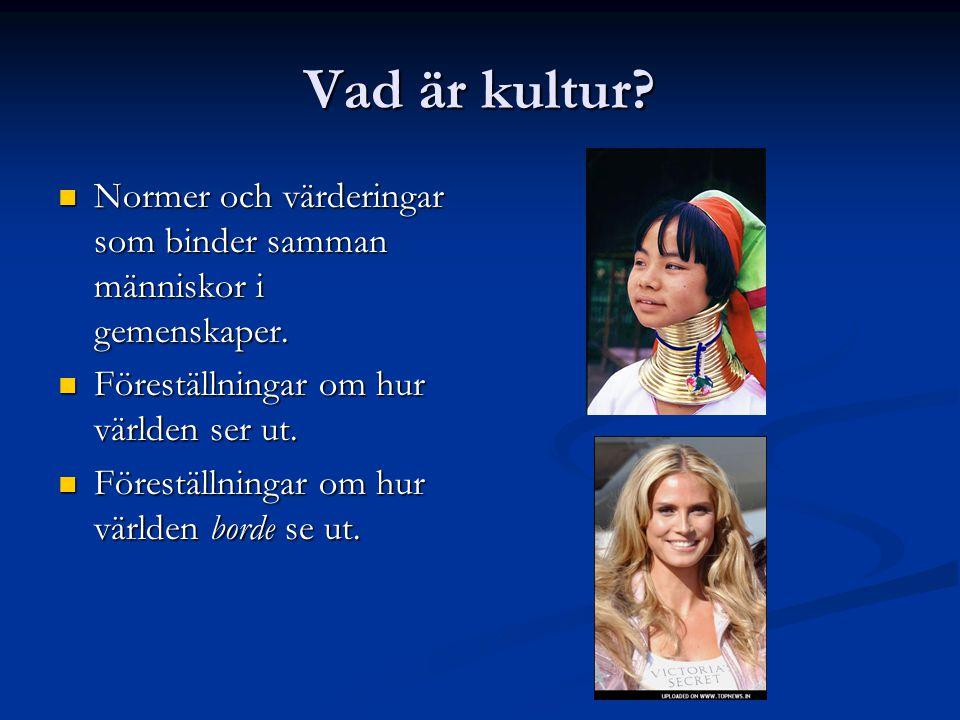 Vad är kultur Normer och värderingar som binder samman människor i gemenskaper. Föreställningar om hur världen ser ut.