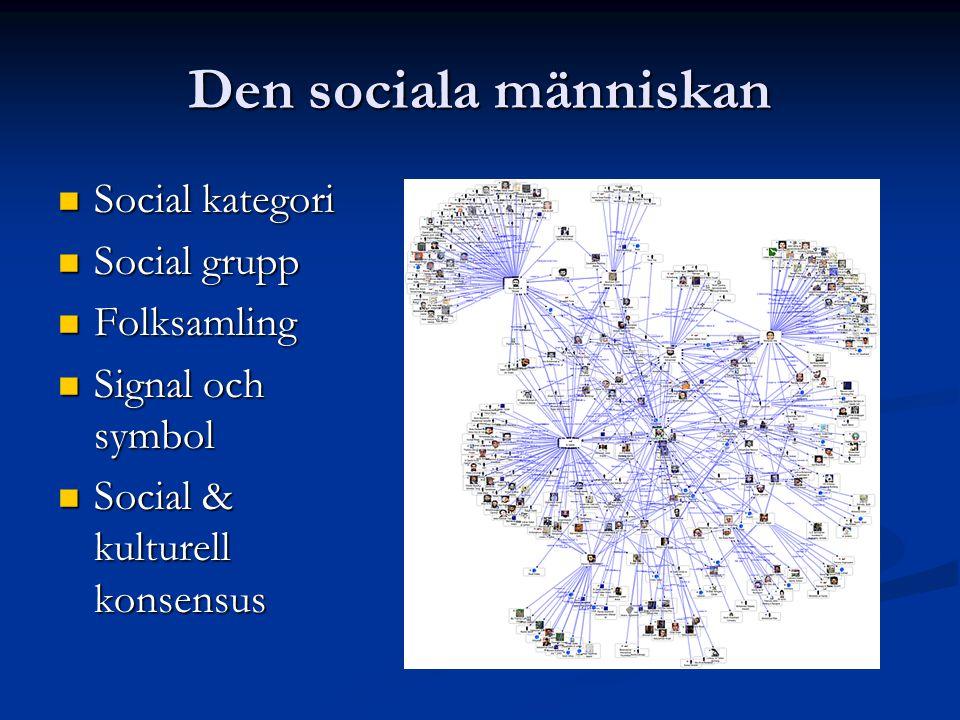 Den sociala människan Social kategori Social grupp Folksamling