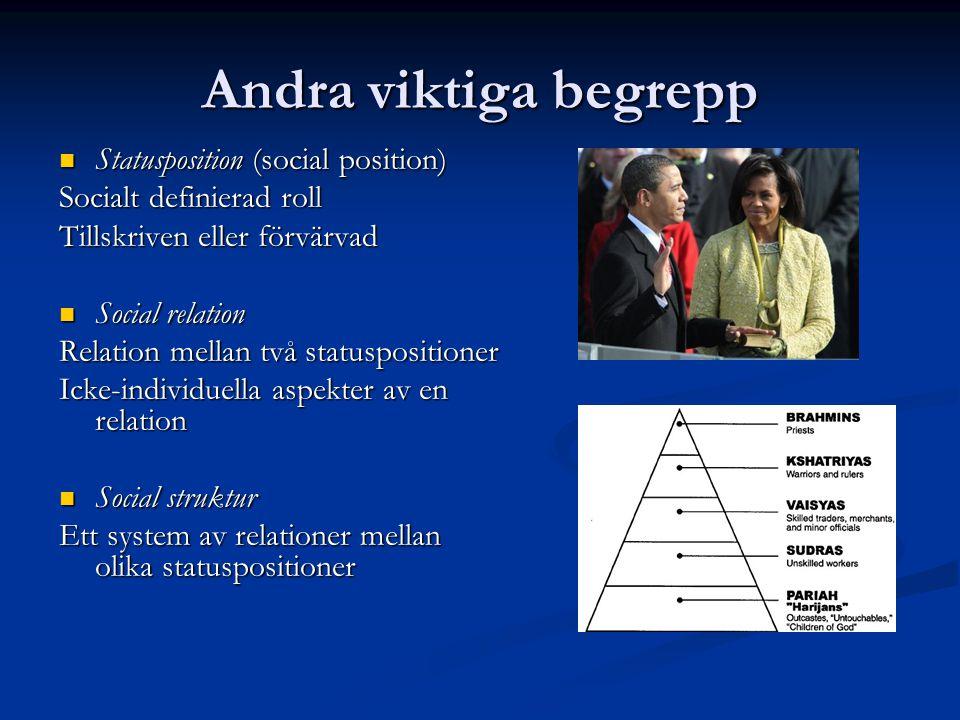 Andra viktiga begrepp Statusposition (social position)