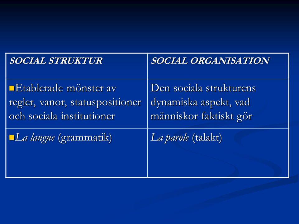 Den sociala strukturens dynamiska aspekt, vad människor faktiskt gör