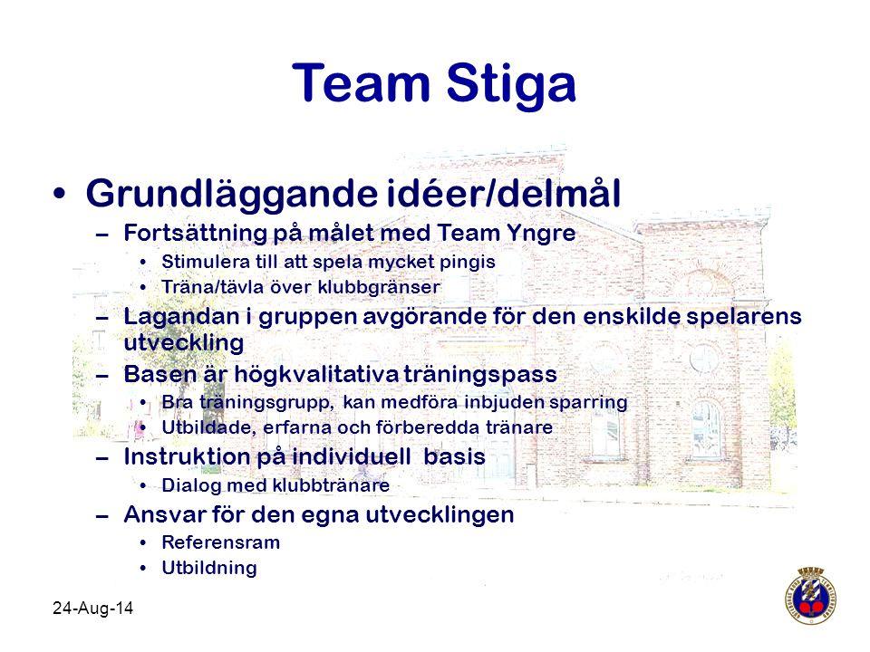 Team Stiga Grundläggande idéer/delmål
