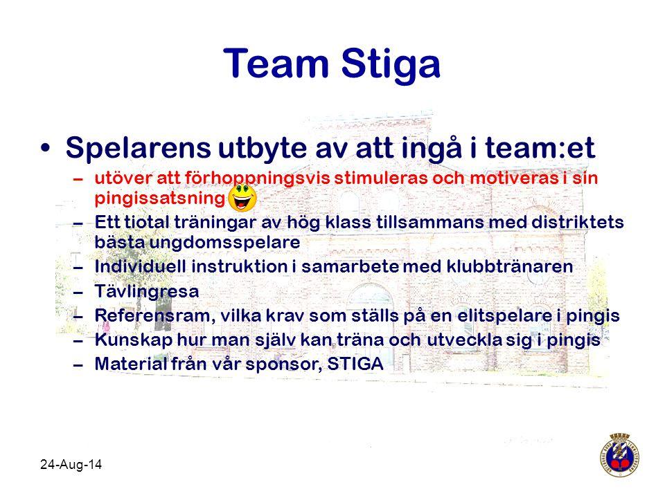 Team Stiga Spelarens utbyte av att ingå i team:et