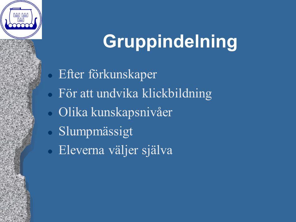 Gruppindelning Efter förkunskaper För att undvika klickbildning