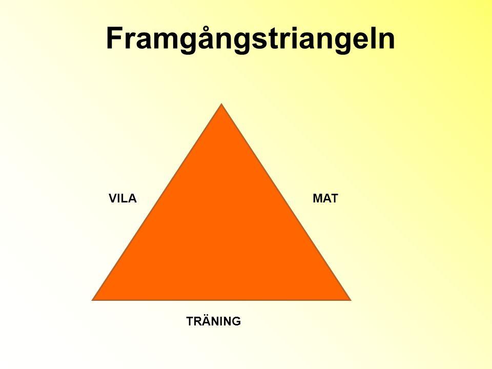 Framgångstriangeln VILA MAT TRÄNING