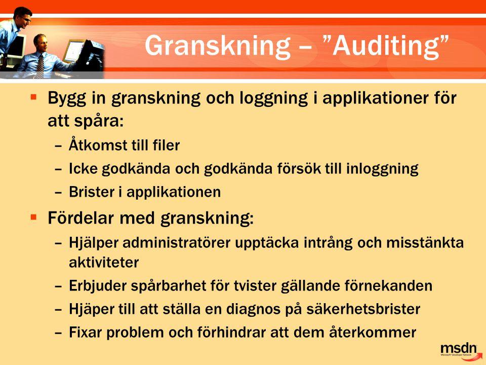 Granskning – Auditing