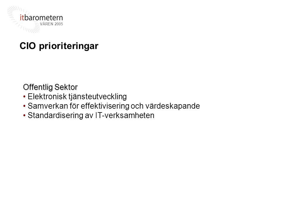 CIO prioriteringar Offentlig Sektor Elektronisk tjänsteutveckling