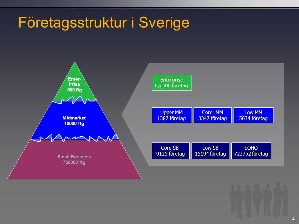 Företagsstruktur i Sverige