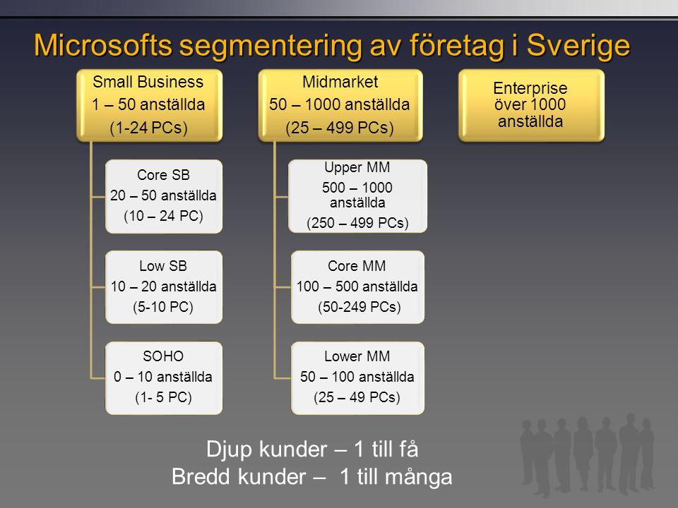 Microsofts segmentering av företag i Sverige