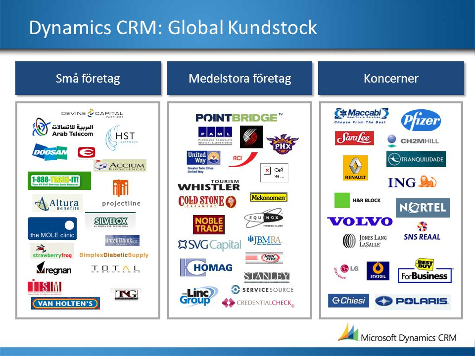 Dynamics CRM: Global Kundstock
