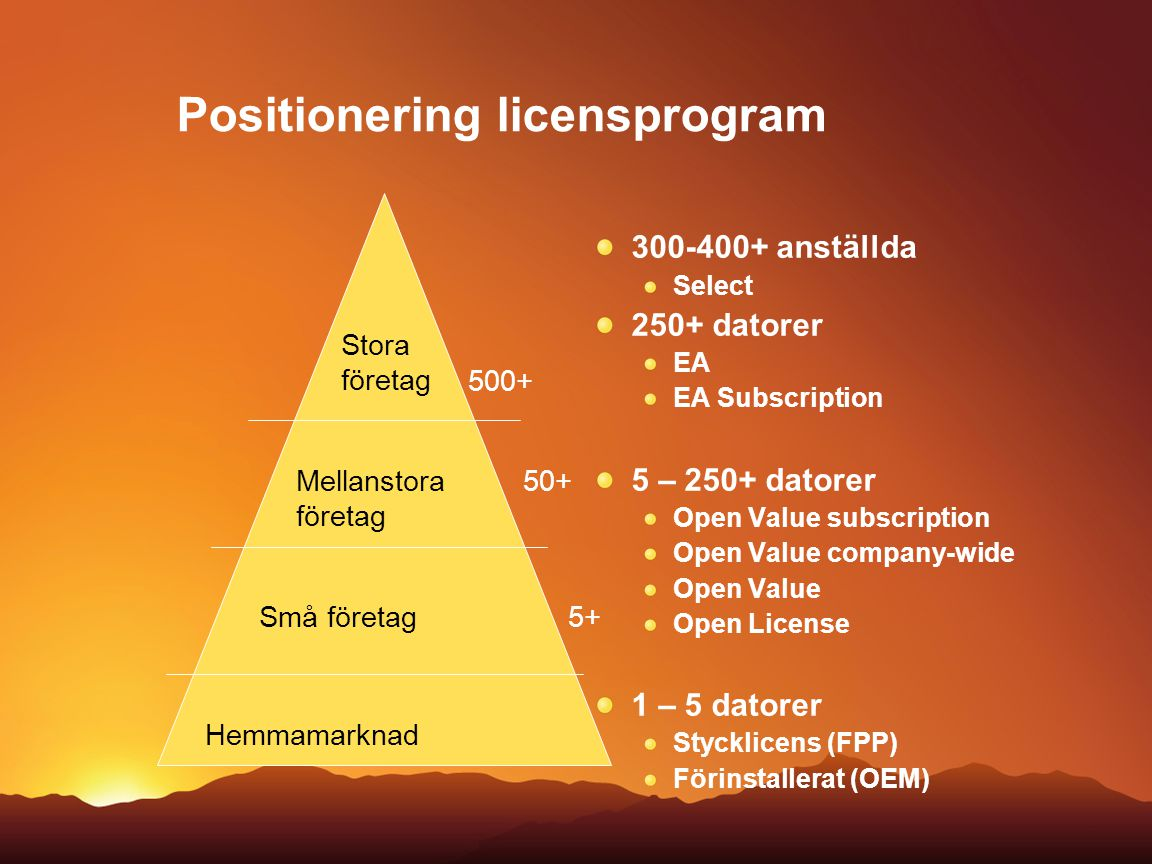 Positionering licensprogram