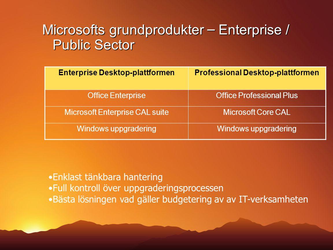 Microsofts grundprodukter – Enterprise / Public Sector
