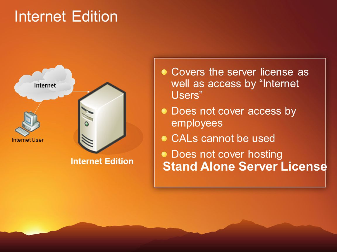 Internet Edition Stand Alone Server License