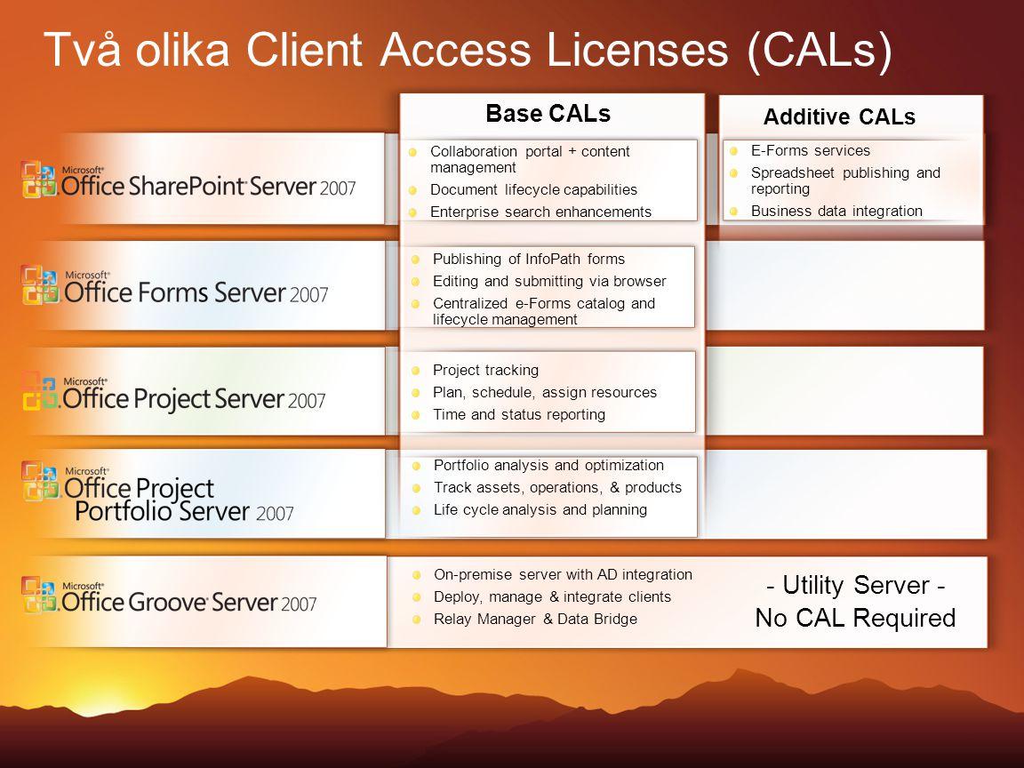 Två olika Client Access Licenses (CALs)