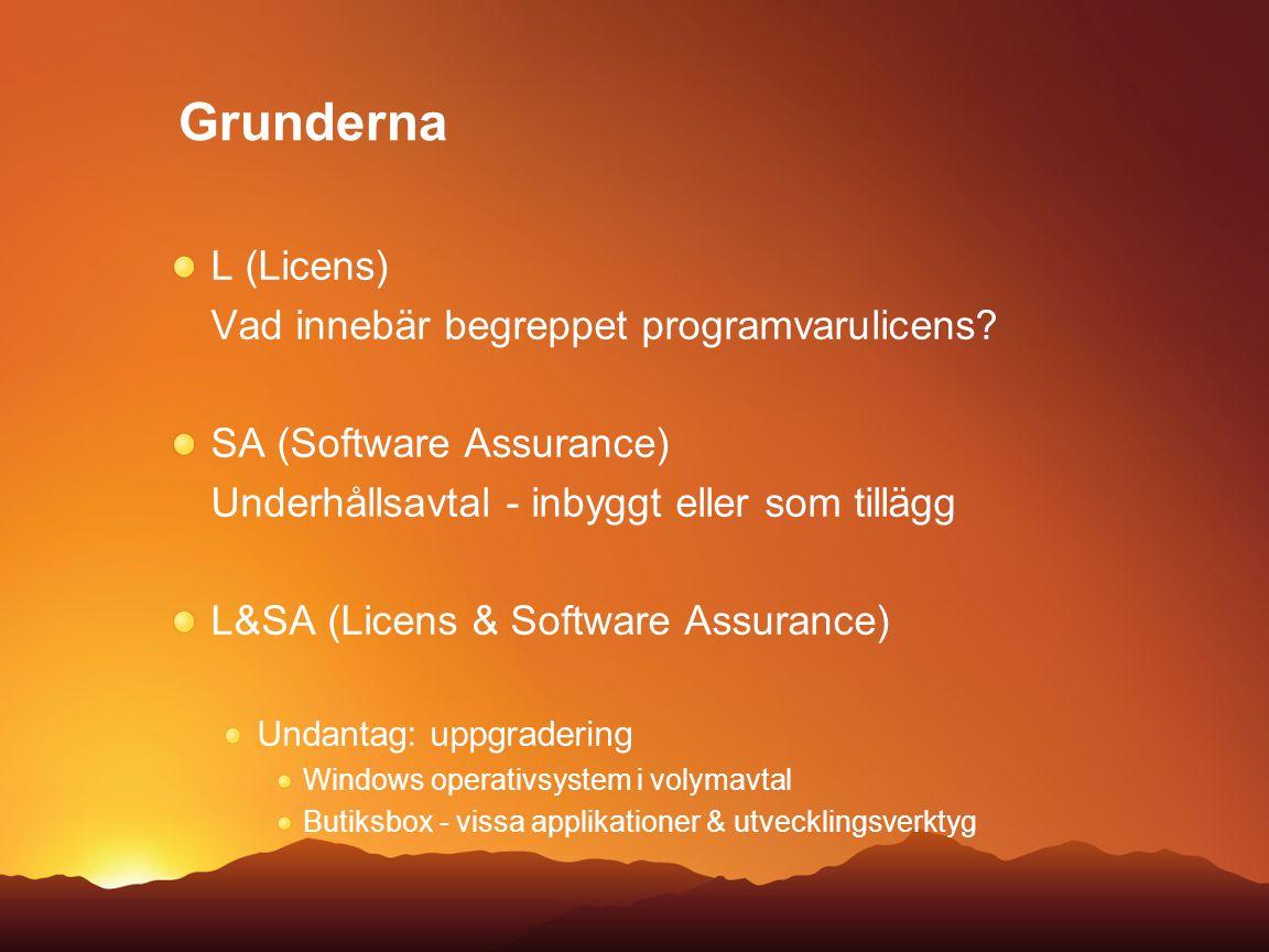 Grunderna L (Licens) Vad innebär begreppet programvarulicens