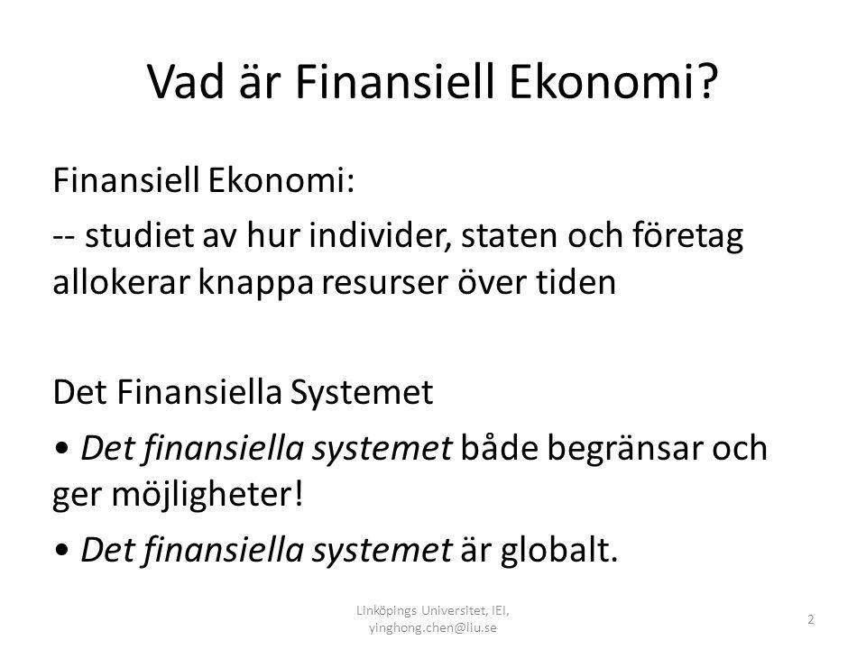 Vad är Finansiell Ekonomi