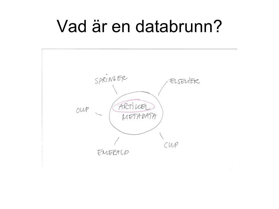 Vad är en databrunn