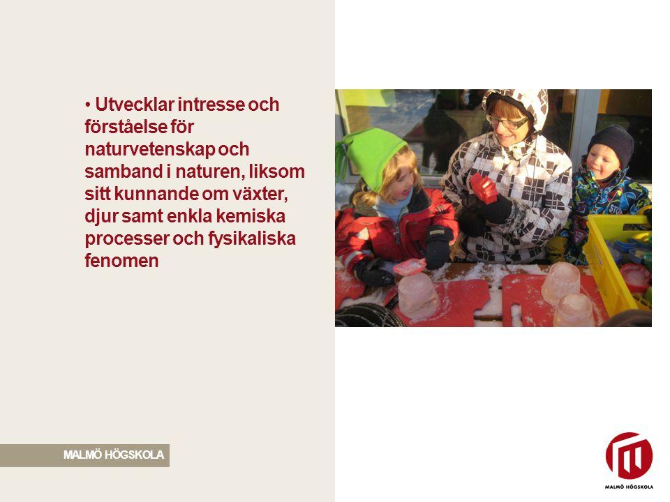 Utvecklar intresse och förståelse för naturvetenskap och samband i naturen, liksom sitt kunnande om växter, djur samt enkla kemiska processer och fysikaliska fenomen