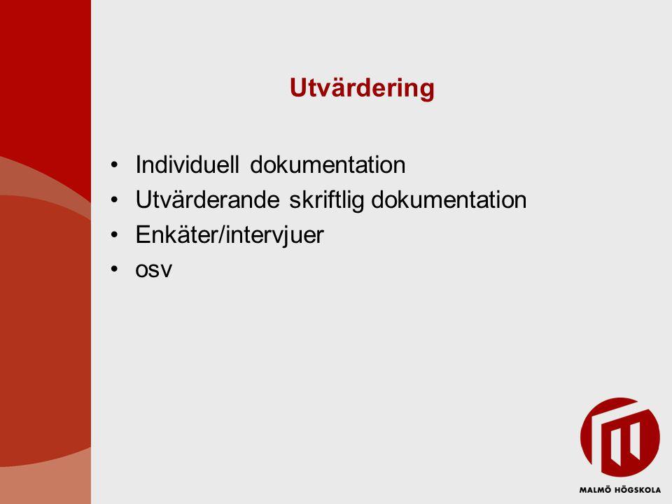 Utvärdering Individuell dokumentation