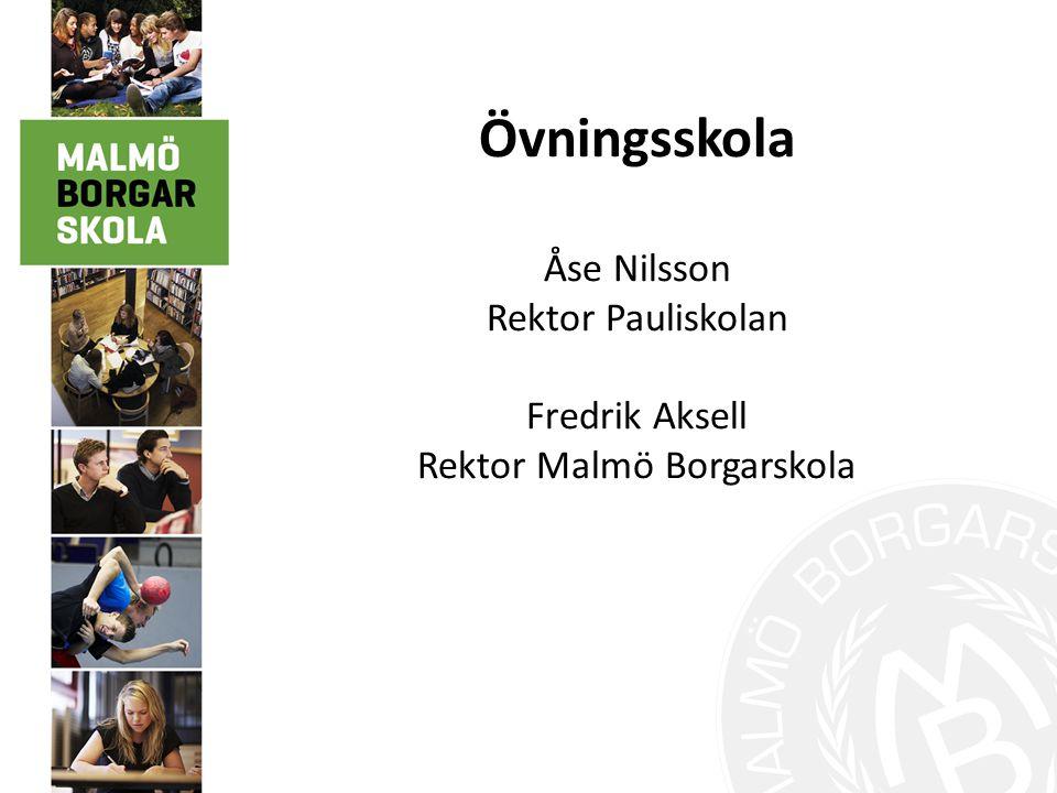 Rektor Malmö Borgarskola