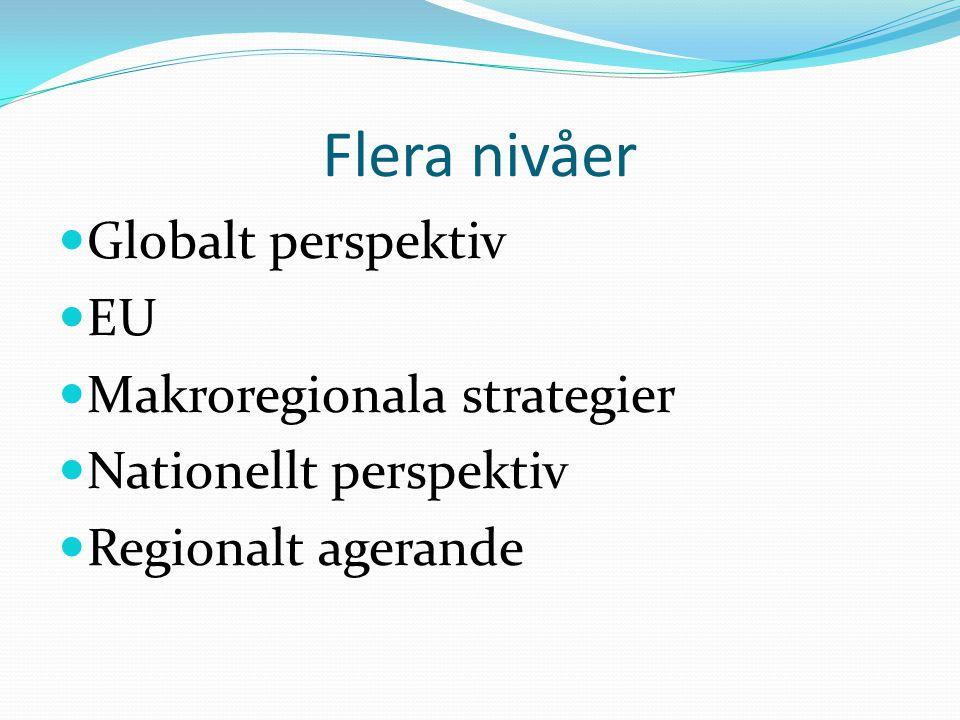 Flera nivåer Globalt perspektiv EU Makroregionala strategier