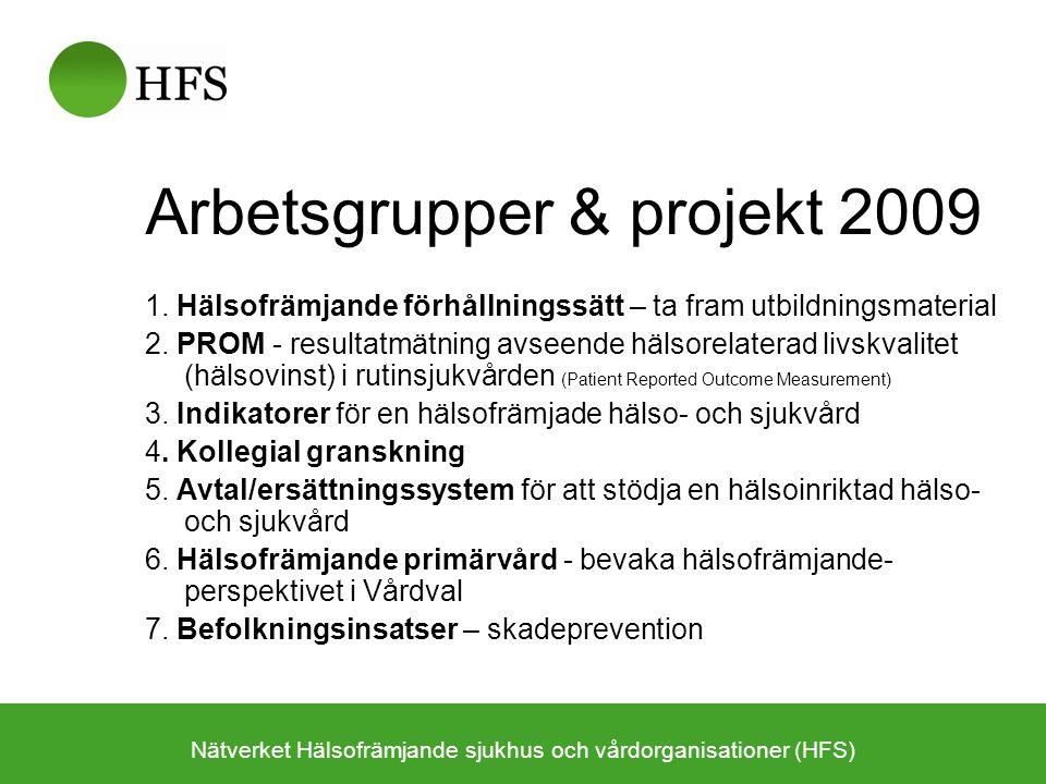 Arbetsgrupper & projekt 2009