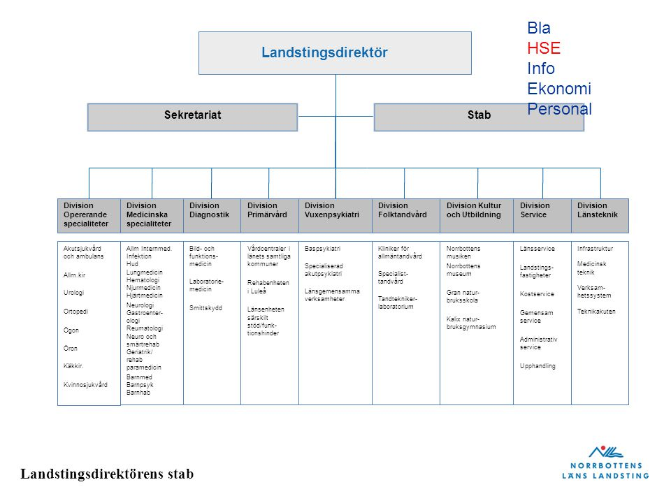 Bla HSE Info Ekonomi Personal Landstingsdirektör Sekretariat Stab