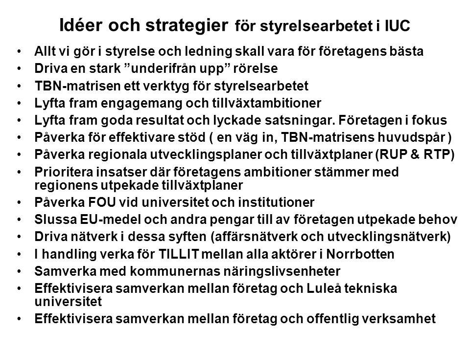 Idéer och strategier för styrelsearbetet i IUC