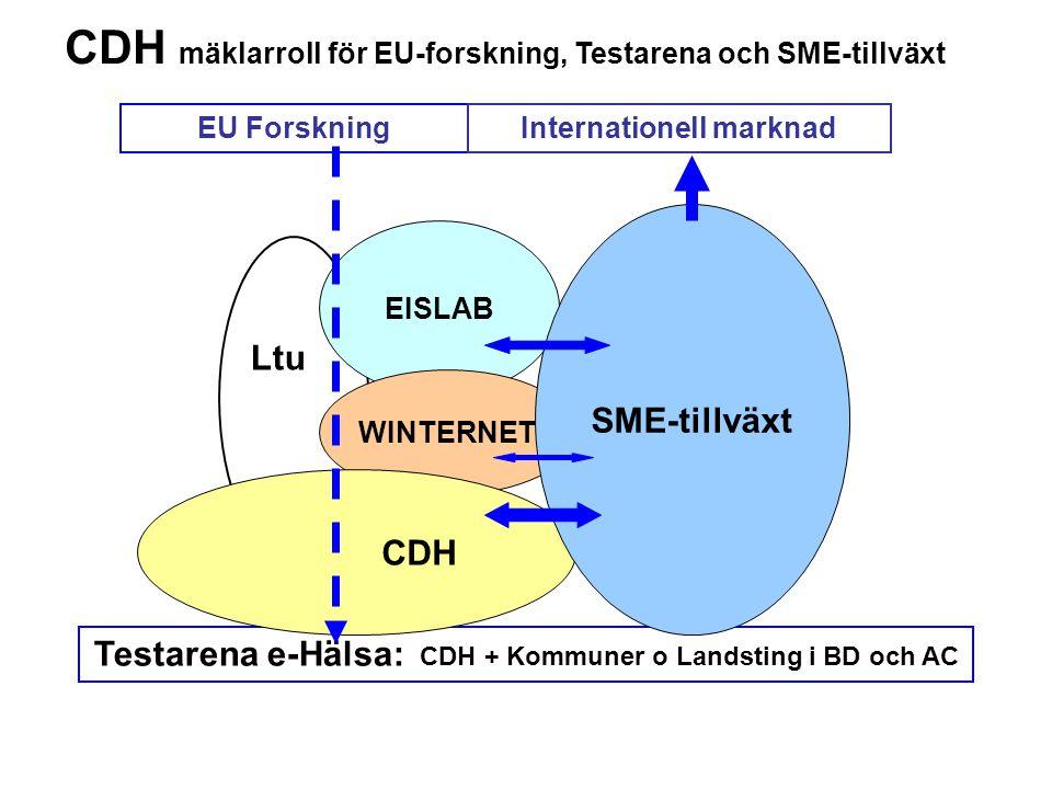 Internationell marknad