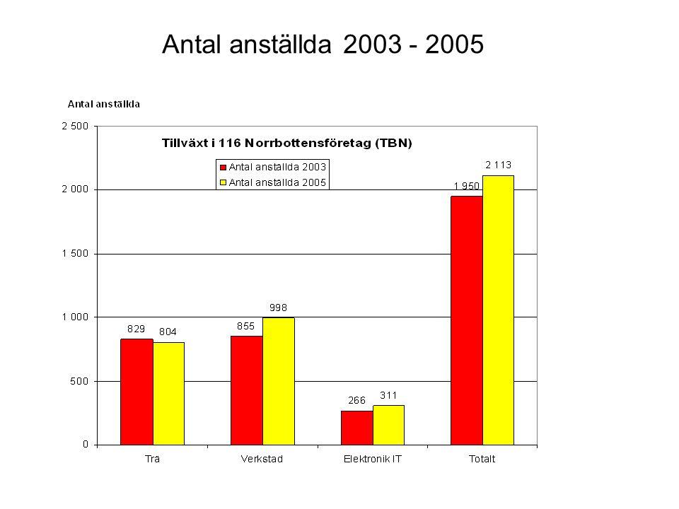 Antal anställda 2003 - 2005