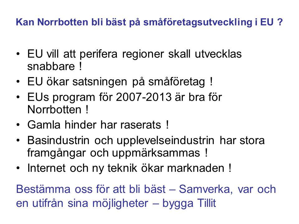Kan Norrbotten bli bäst på småföretagsutveckling i EU
