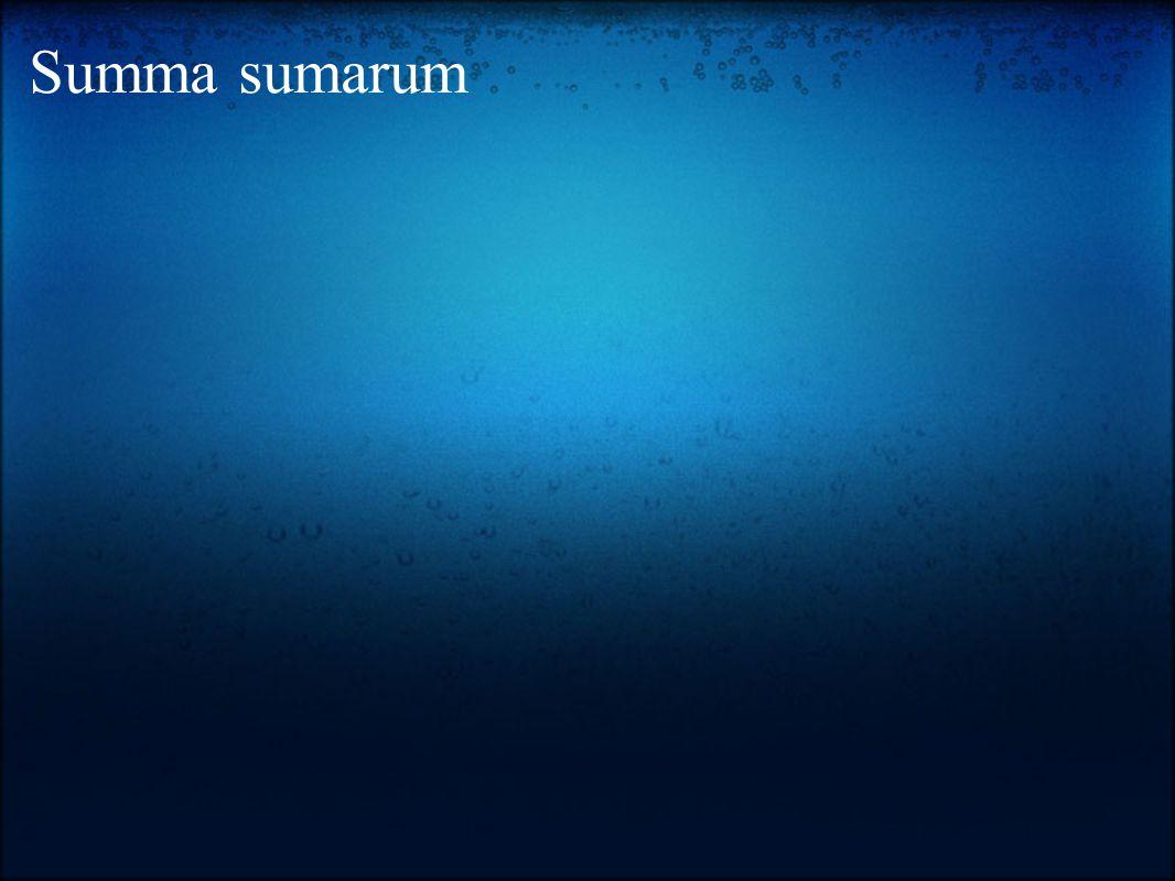 Summa sumarum