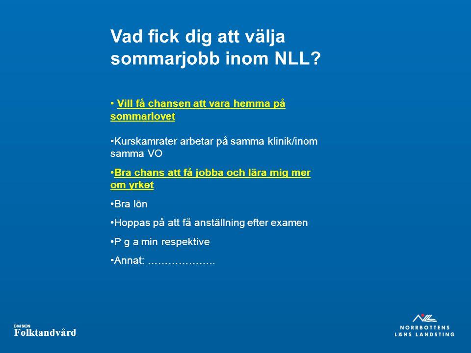 Vad fick dig att välja sommarjobb inom NLL