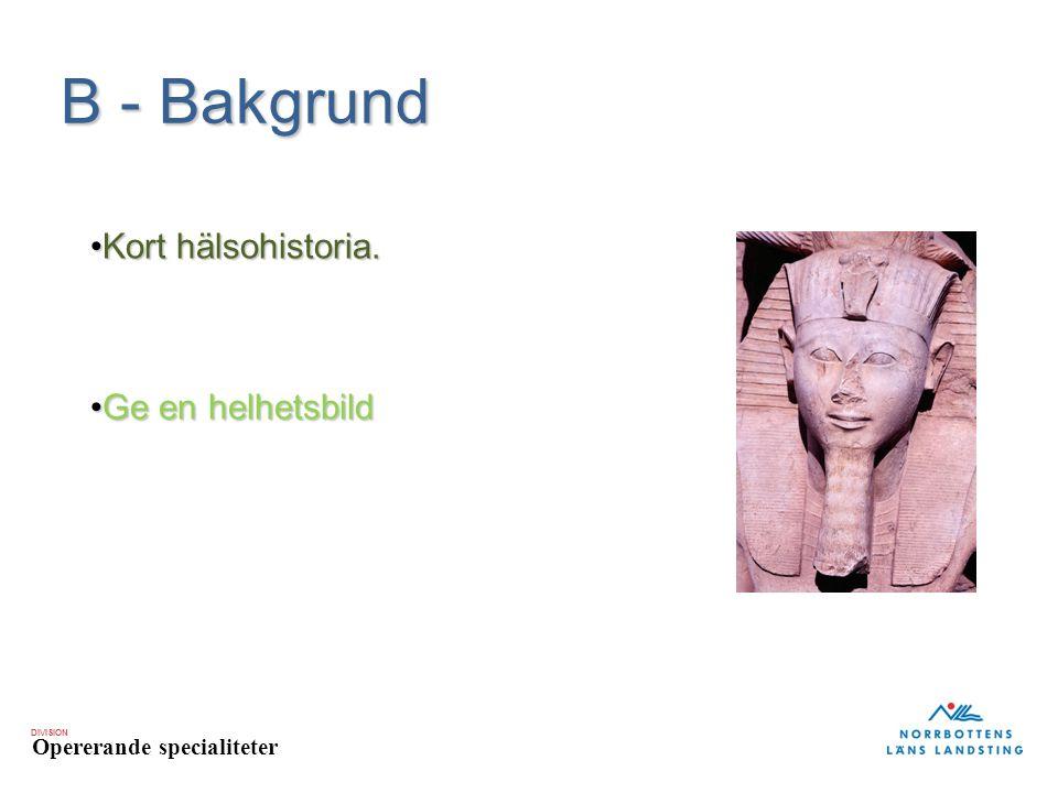 B - Bakgrund Kort hälsohistoria. Ge en helhetsbild
