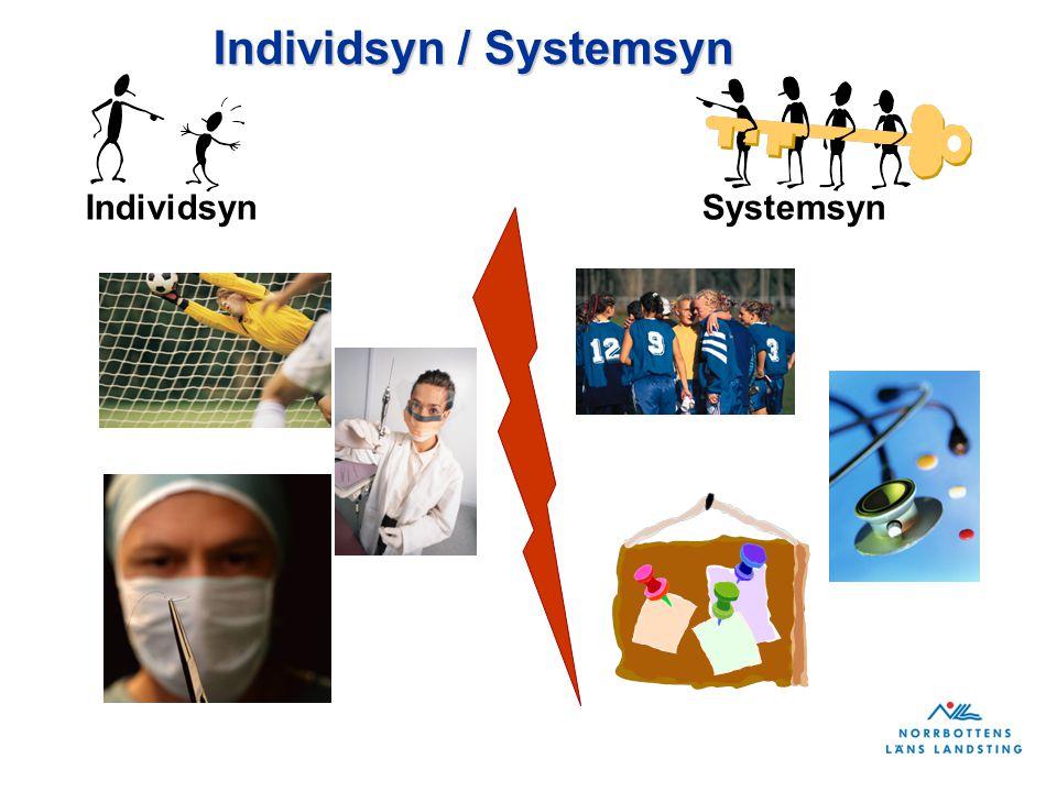 Individsyn / Systemsyn