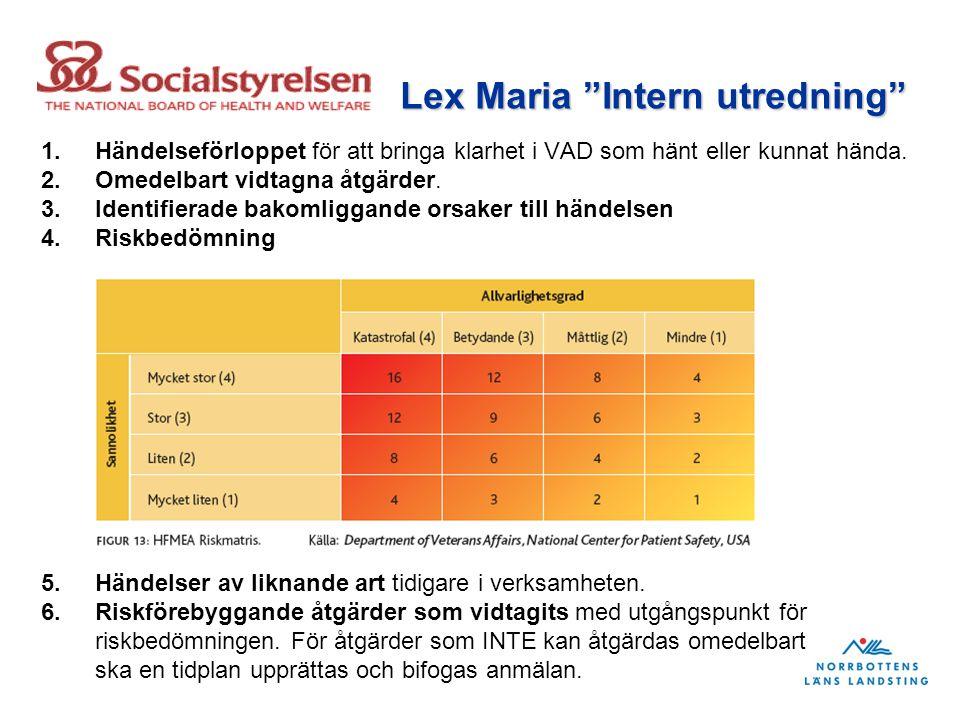 Lex Maria Intern utredning
