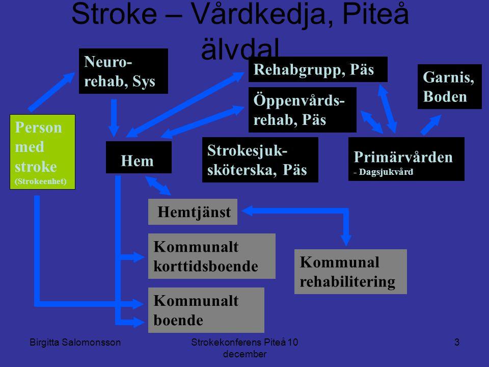 Stroke – Vårdkedja, Piteå älvdal
