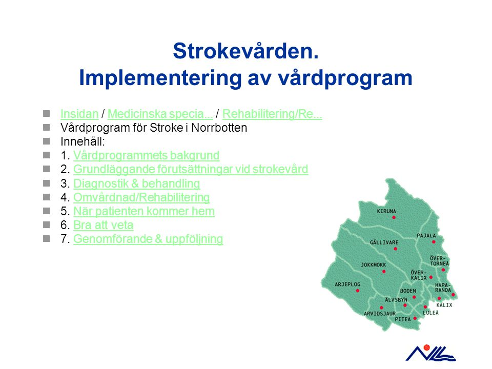 Strokevården. Implementering av vårdprogram