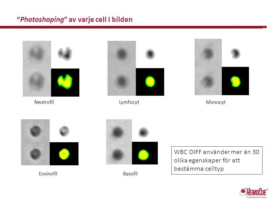 Photoshoping av varje cell I bilden