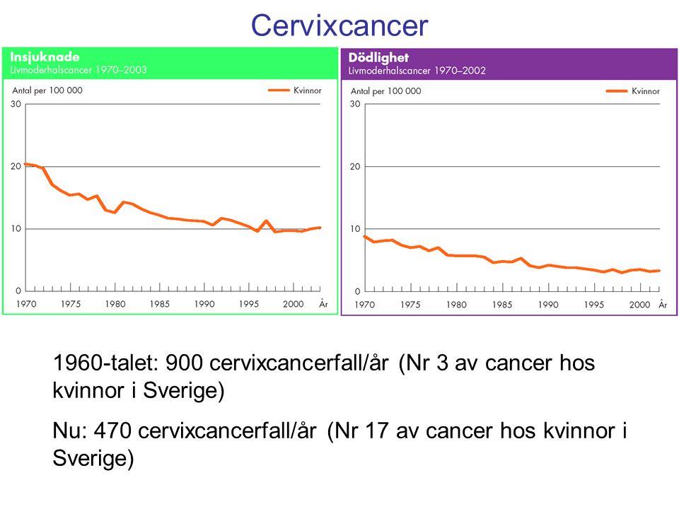Cervixcancer 1960-talet: 900 cervixcancerfall/år (Nr 3 av cancer hos kvinnor i Sverige)