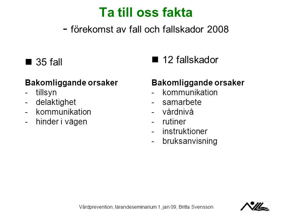 Ta till oss fakta - förekomst av fall och fallskador 2008