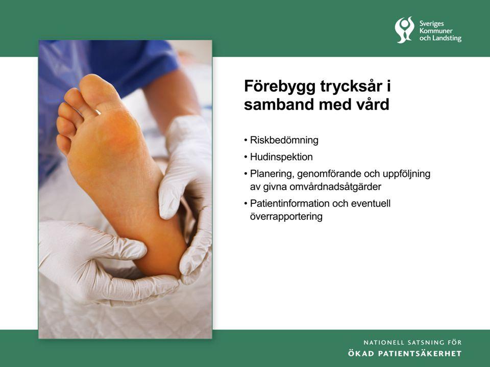 Vårdprevention, lärandeseminarium 1, jan 09, Britta Svensson