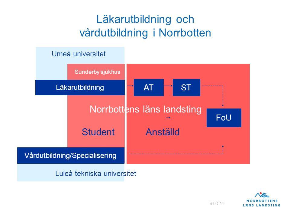 Läkarutbildning och vårdutbildning i Norrbotten