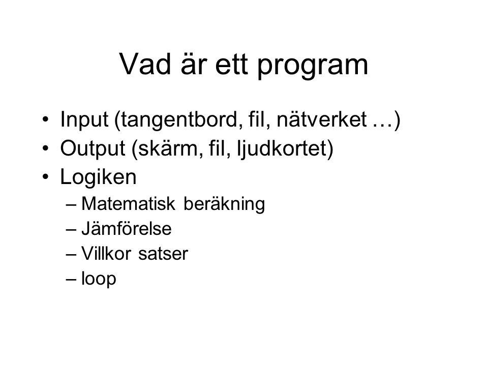 Vad är ett program Input (tangentbord, fil, nätverket …)