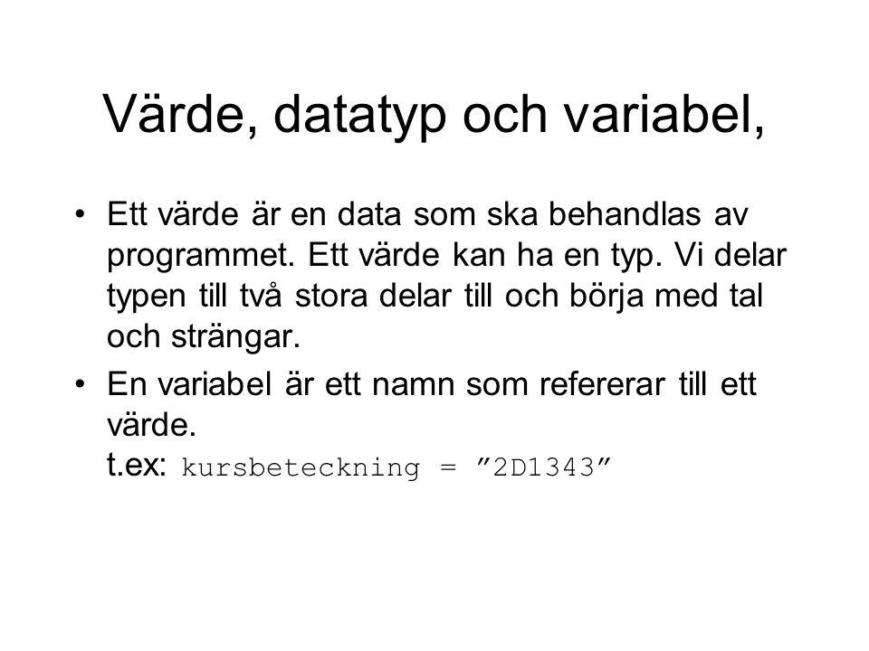 Värde, datatyp och variabel,